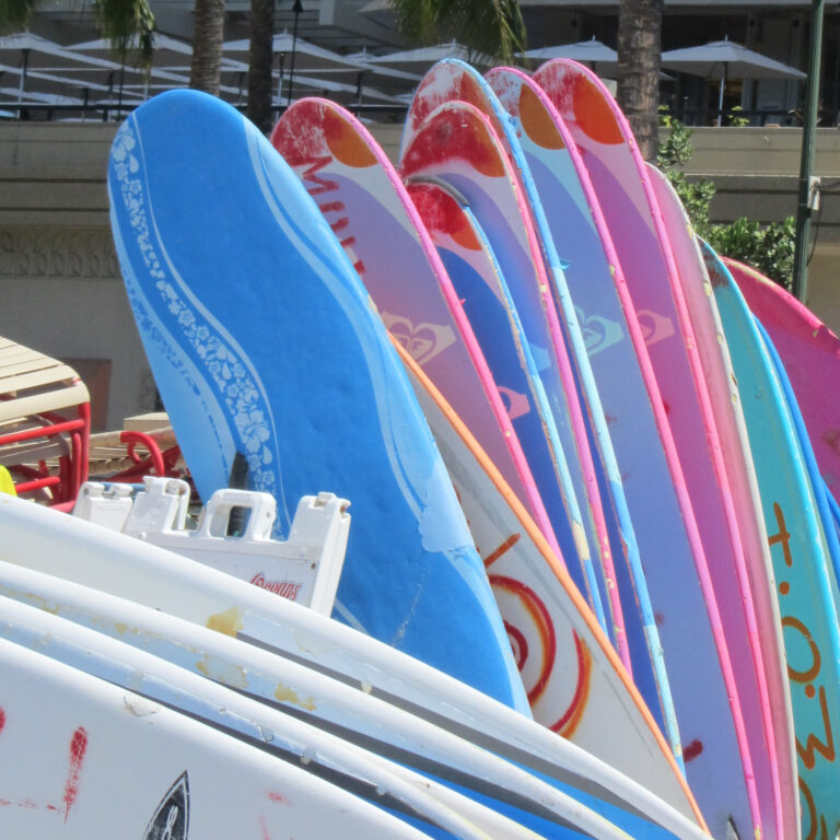 Une journée de SURF, <br>à Hawaii, Hossegor ou Hendaye